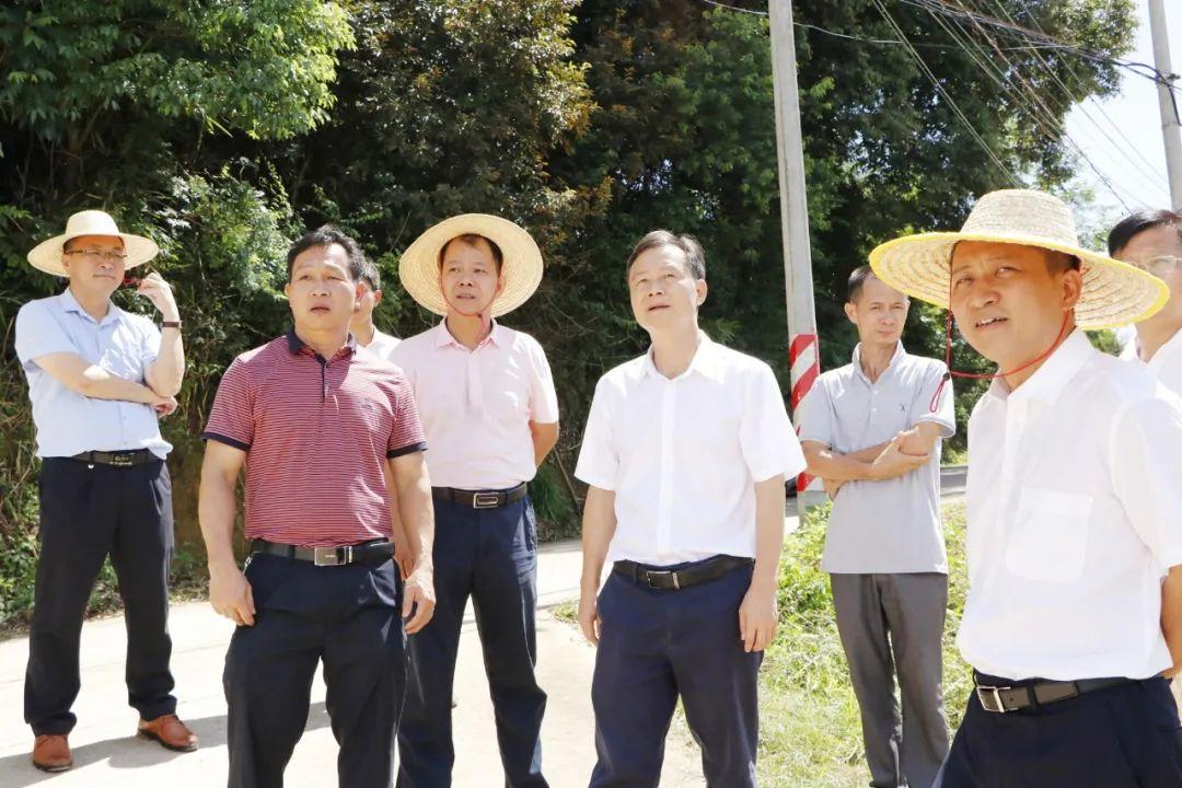 县委书记廖继聪率队到龙窝镇督导检查重点工作